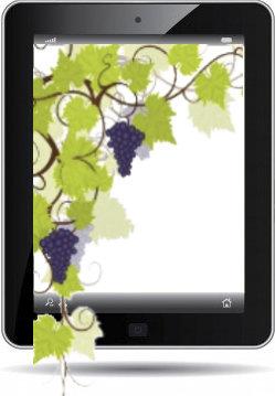 Transición digital en el sector del vino
