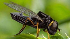 Walmart ha patentado abejas robóticas para polinizar plantas.