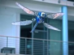 Indra colabora en el concurso internacional 'Drones For Good' del gobierno de Emiratos Árabes Unidos
