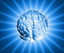 Neurociencia, comunicación y economía a través de la emocionalidad