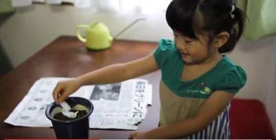 El periódico japonés que se convierte en flor