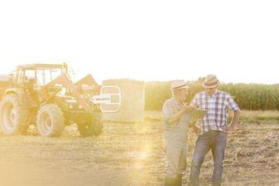 Telefónica inicia el despliegue del Proyecto Terrotorio Rural Inteligente